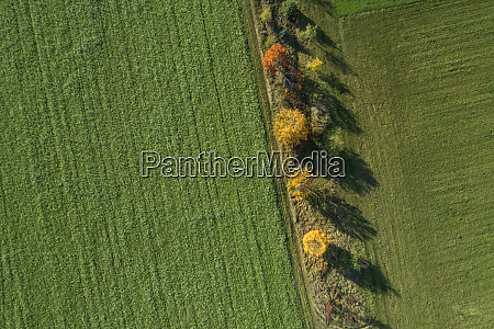 germany bavaria drone view of row
