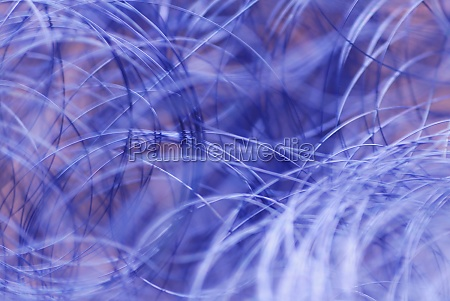 close up of blue strings