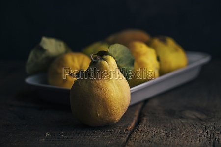 quince fruits on dark wooden background